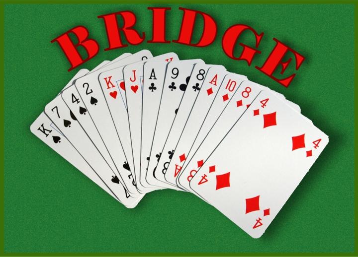 WIZO Bridge